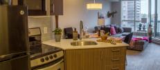Ottawa high rise rental kitchen