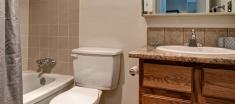 Woodlands Manor Apartment washroom