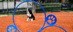 Navaho Terrace Dog Park