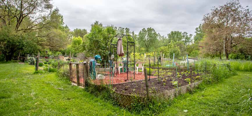 outdoor community garden with trees plants and flowers