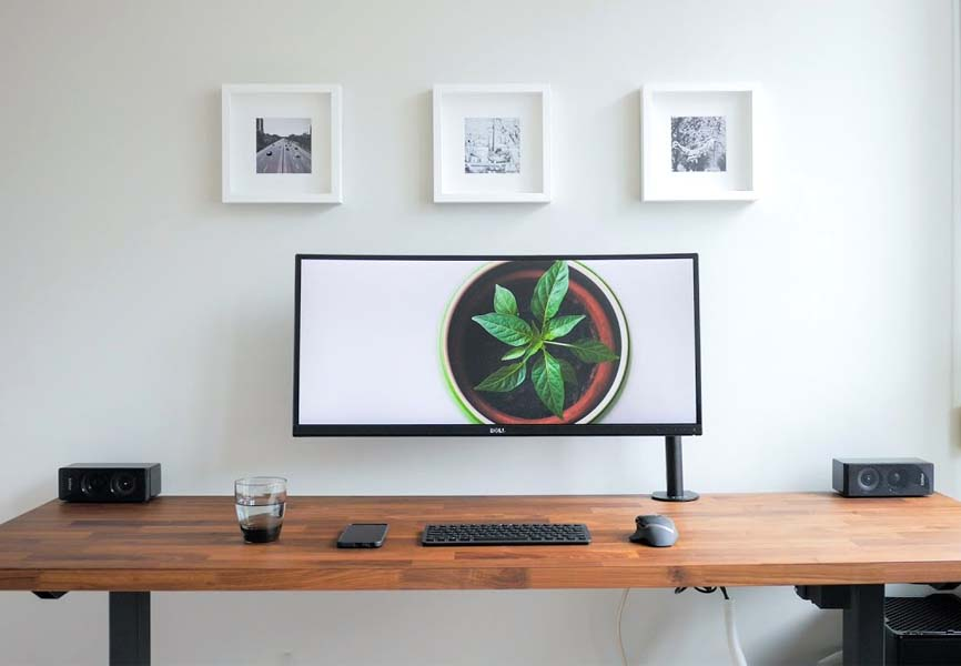Dessk top computer with a plant on the screen