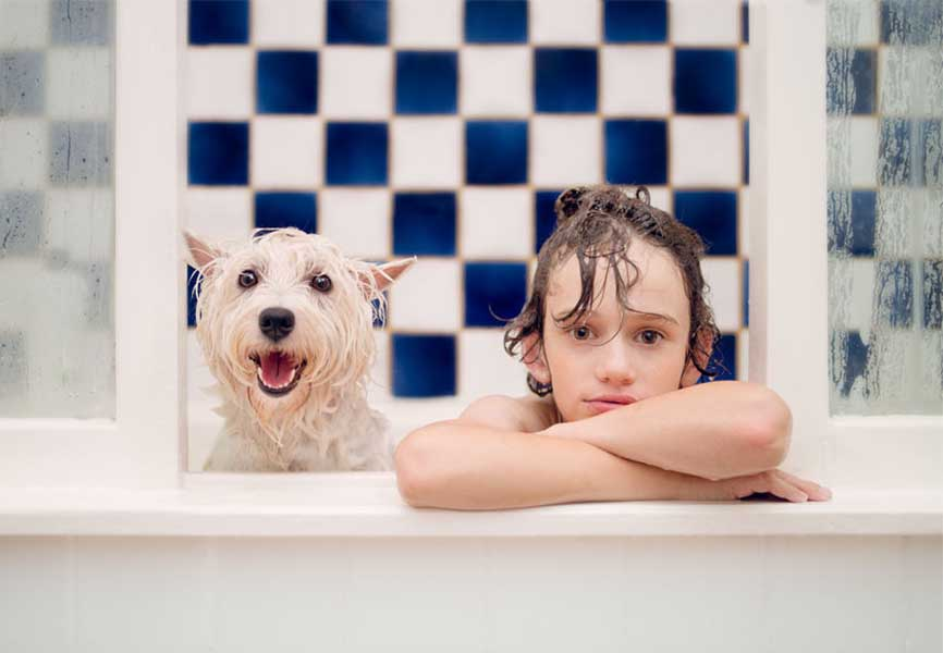 Bay and dog in a bathtub