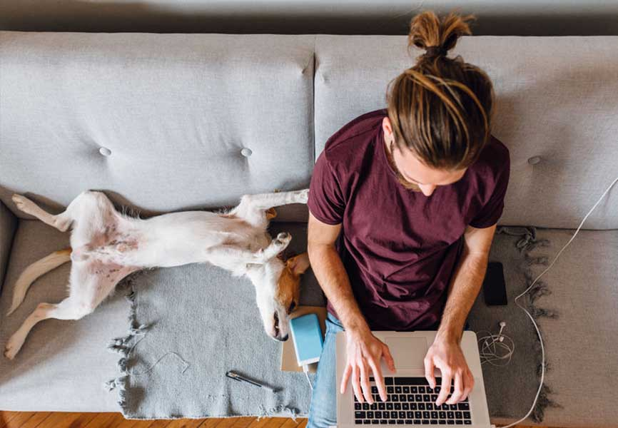 Man using a laptop on the couch next to his dog