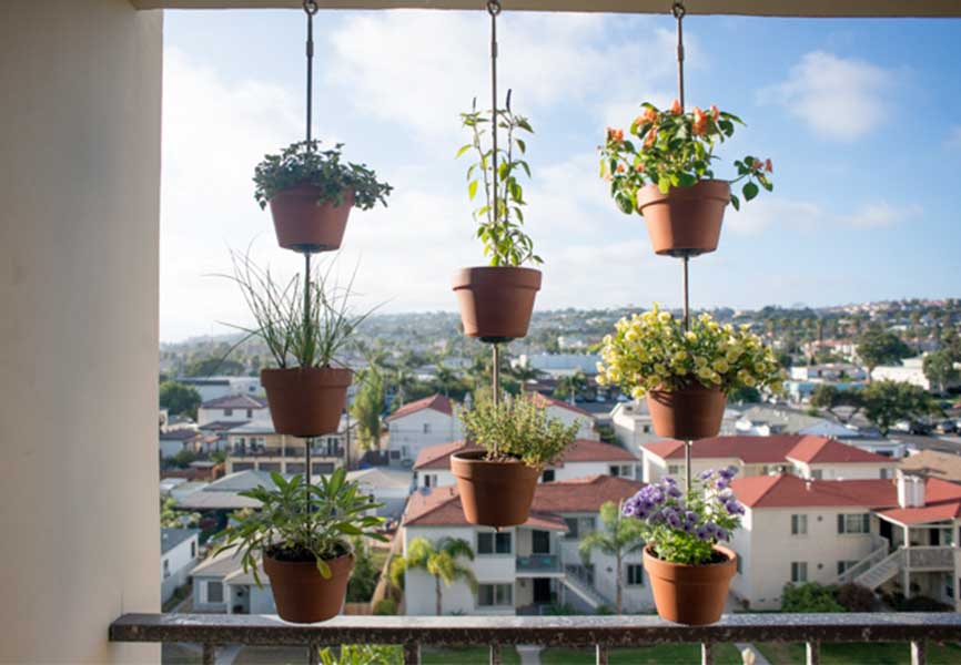potted plants and flowers hanging from apartment balcony