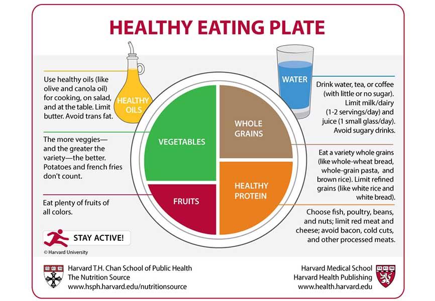 Healthy vegan eating plate diagram