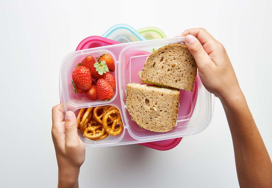 Tupperware with a sandwich, strawberries and pretzels