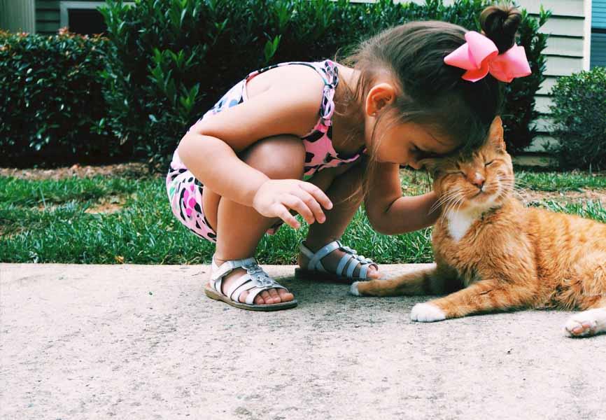 little girl petting cat outside in grass