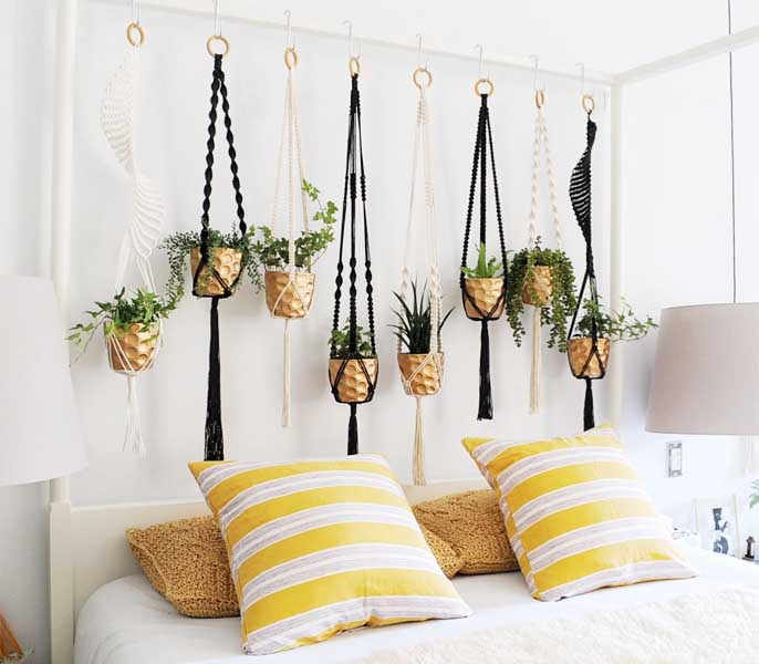 yellow bedroom with hanging indoor plants