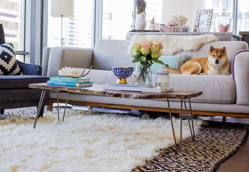 living room with layered carpets and dog on the couch