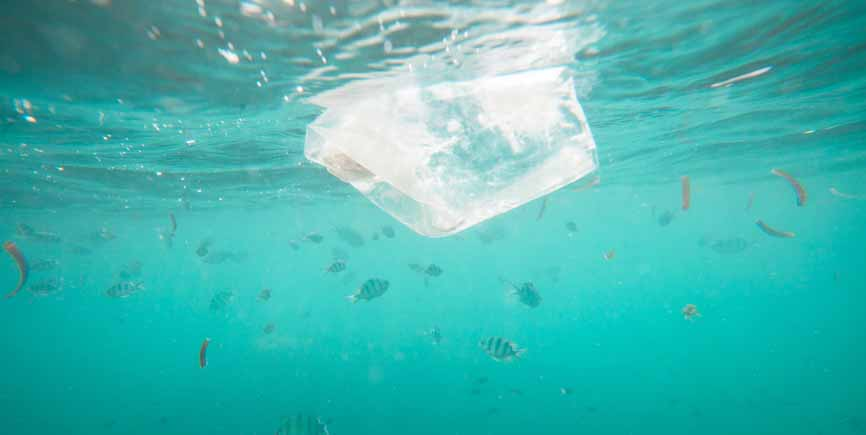 ocean with fish and plastic bag floating