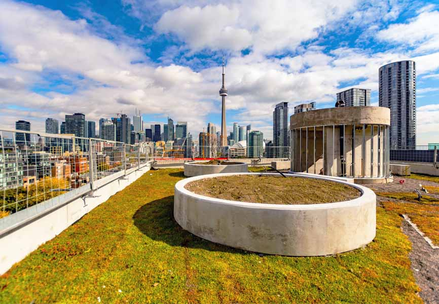 rooftop at King West with dog run amenities on it