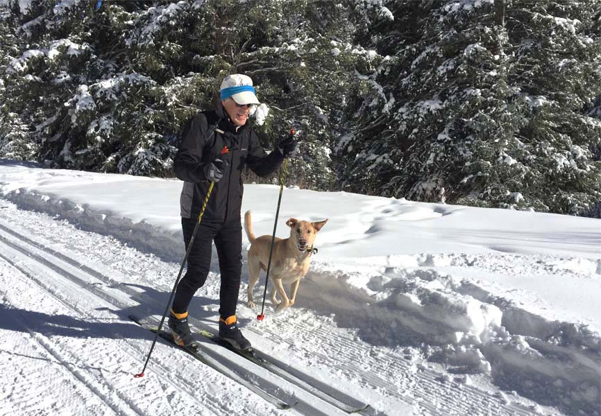 older man cross country skiing with his dog