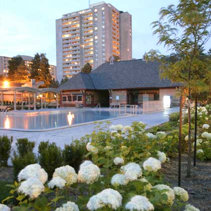 outdoor pool with white hydrangeas around it