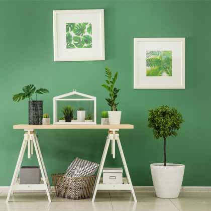 green room in house with table and many indoor plants
