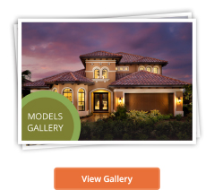 View Models Gallery