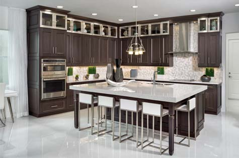 Kitchen Interior, includes stainless steel appliances and is open concept
