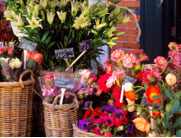 Mill Street Florist