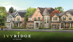 Ivy Ridge - Now Open