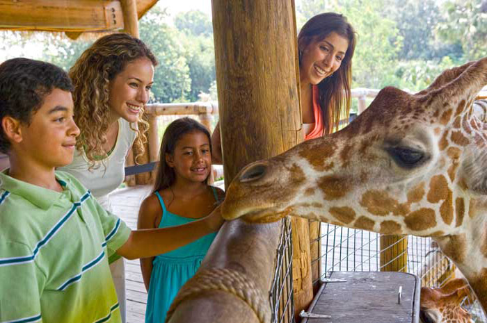 Central to top rated zoos