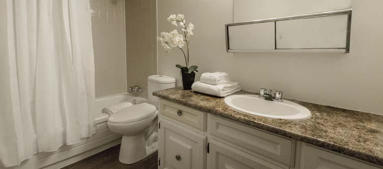 Applewood Village Bathroom
