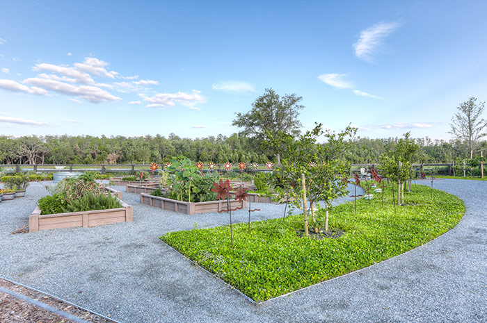 A community garden brings friends and families together at Lake Nona